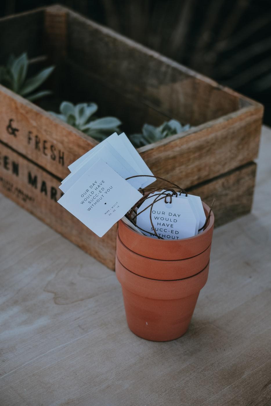 succulent wedding gift